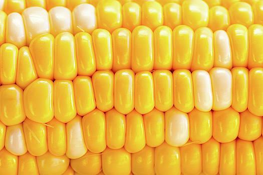 Sweet Corn by SR Green