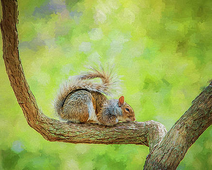 Sweet Dreams by Cathy Kovarik