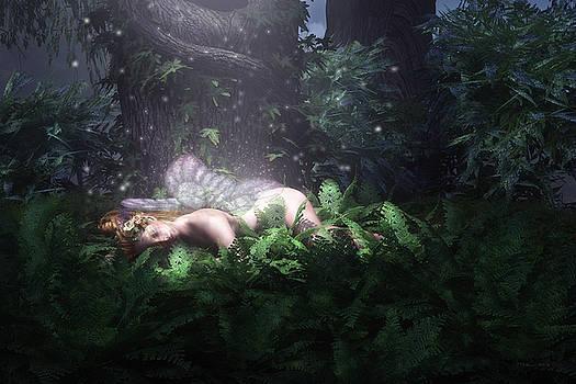 Sweet Dreams by Melissa Krauss