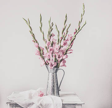 Kim Hojnacki - Sweet Gladiolus