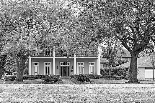 Sweet Home New Orleans 7 bw by Steve Harrington