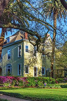 Steve Harrington - Sweet Home New Orleans - Spring Garden
