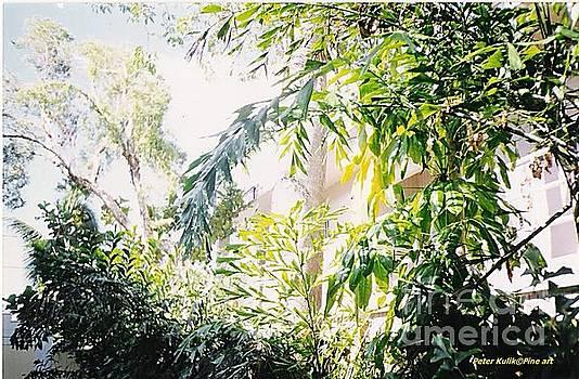 Sweet Key West green by Peter Kulik