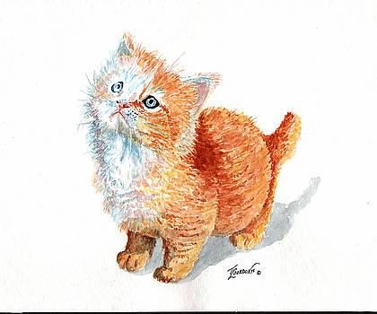 Sweet kitty by Timithy L Gordon