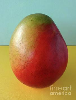 Sweet Mango by Kelley Albert