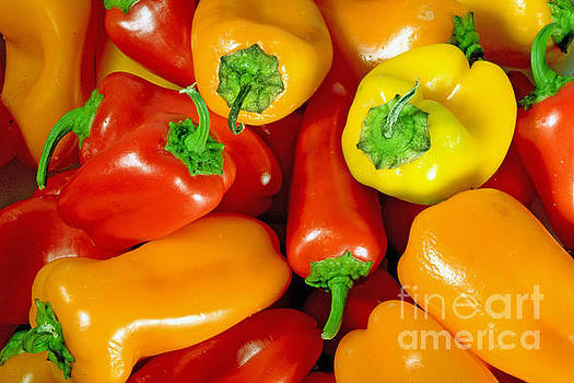 Sweet Peppers by A New Focus Photography