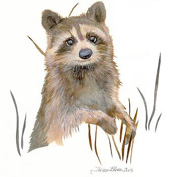 Sweet Raccoon by Theresa Blosser