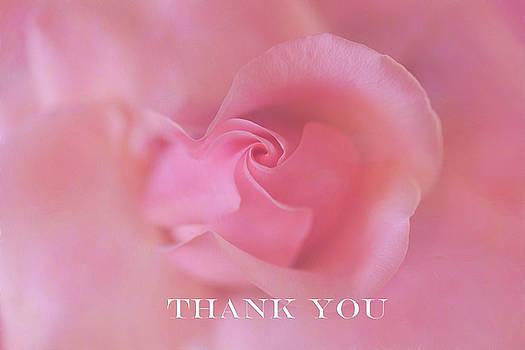 Sweetness Thank You Card by Kay Kochenderfer