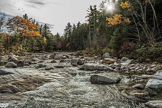 Robert Hayes - Swift River, New Hampshire