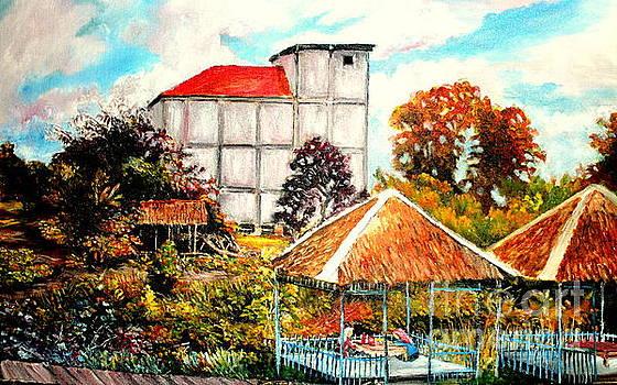Swifts  Nest's Building by Jason Sentuf