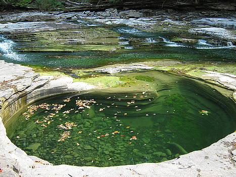 Swimhole by Tony Murray