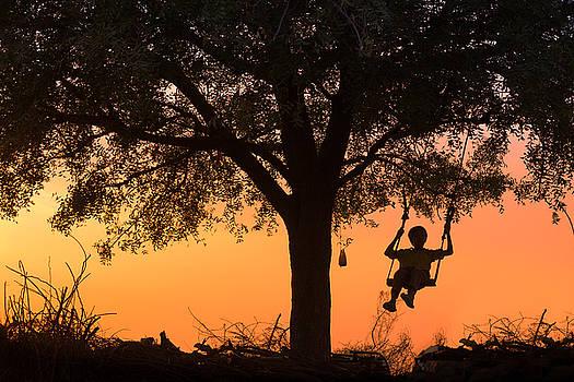 Swing by Marji Lang