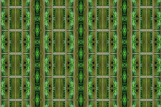 Swirly Wood In Green by Larry Jost