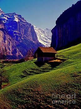 Switzerland Alps Grutschap alpine meadow spring by Tom Jelen