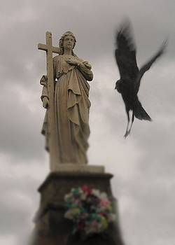 Gothicrow Images - The Gothic Swooping Rook In Motion