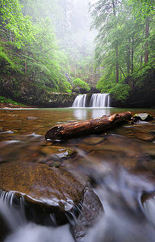 Sycamore Falls by Dennis Sprinkle