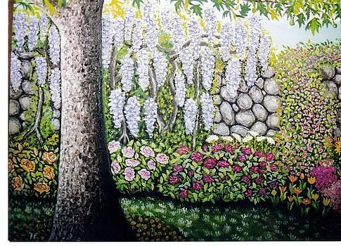 Sycamore Garden by William Ohanlan