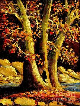 Peter Ogden - Sycamores in Autumn Helotes