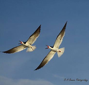 Barbara Bowen - Sychronized Flying