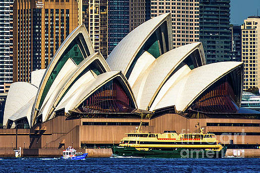 Sydney Opera by Andrew Michael