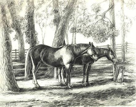 Sylvan Dale Paddock by Margi Greene