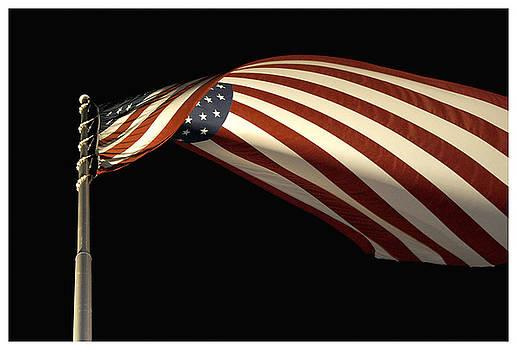 Symbol of Liberty by Dawn Davis
