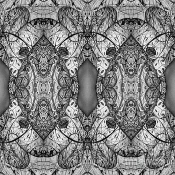 Symmetrical by Jack Dillhunt