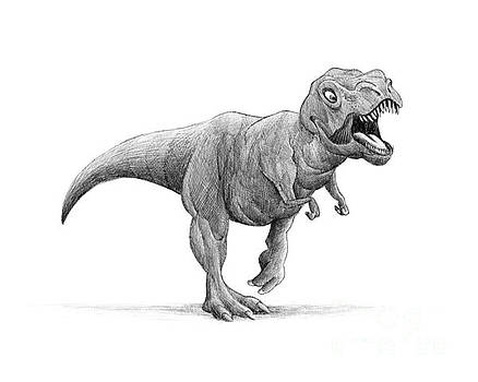 T-Rex by Michael Ciccotello