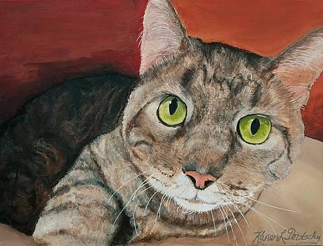 Caesar the Tabby Cat by Karen Dortschy