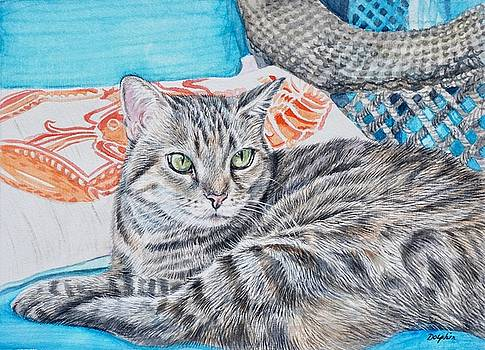 Tabby Cat  by Gail Dolphin