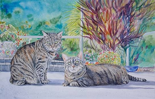 Tabby Cats by Gail Dolphin