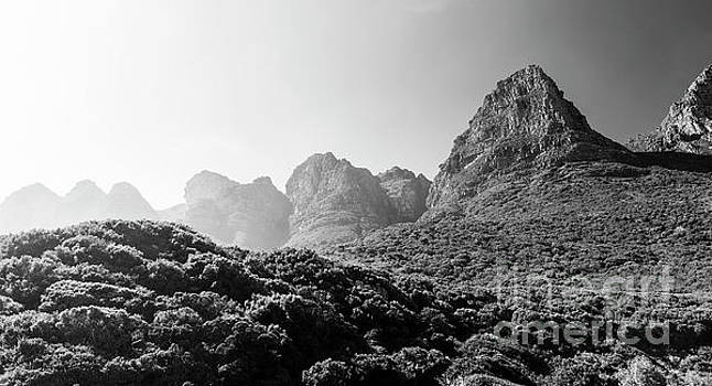 Tim Hester - Table Mountain National Park Black and White