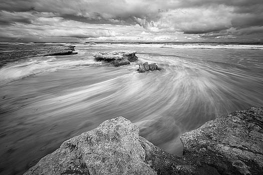 Tabletop Reef - Infrared bw by Alexander Kunz