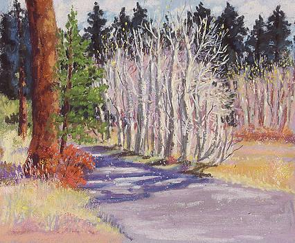 Tahoe Aspens, Late Fall by Rhett Regina Owings