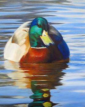 Tahoe Duck by Deborah Plath