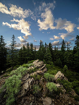 Tahoe sunset ridge by Martin Gollery