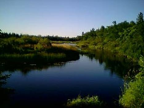 Tahquamenon River by Jeremy Gibson