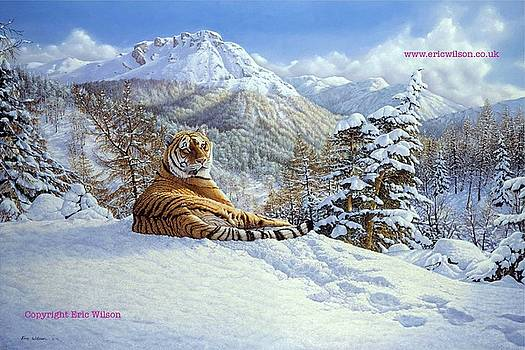 Taiga Tiger by Eric Wilson