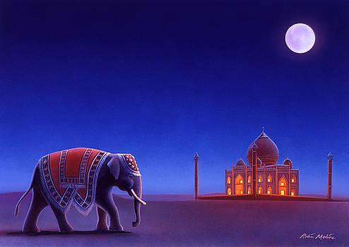 Taj Mahal Elephant by Robin Moline