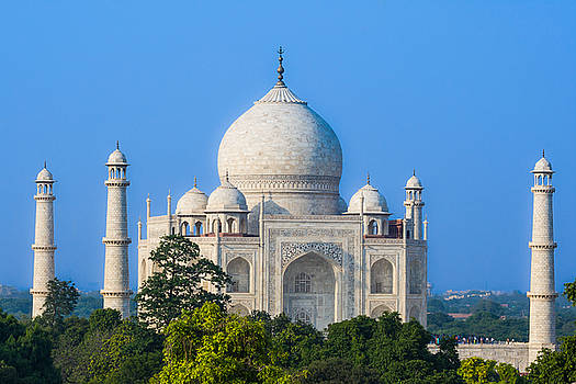 Taj Mahal from a distance by Nila Newsom