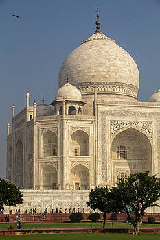Taj Mahal from the left, with bird by Beth Partin