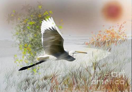 Take off by Gary Bridger