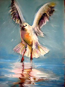 Take Off Gull by Shirley Roma Charlton