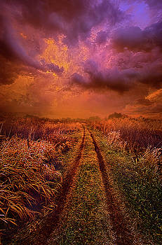 Take Only What You Can Carry With You by Phil Koch