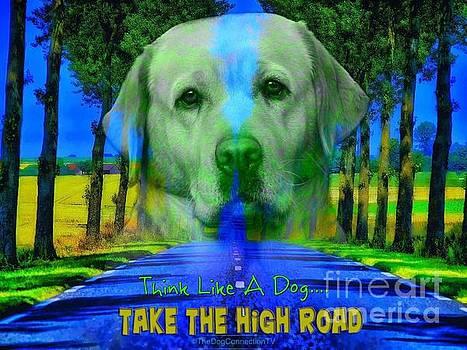 Kathy Tarochione - Take the high road
