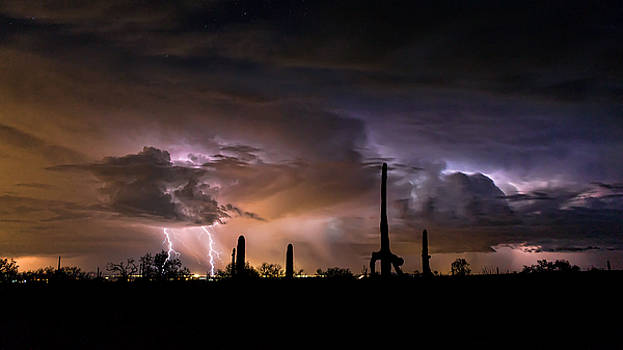 Taken By Storm by Ryan Seek