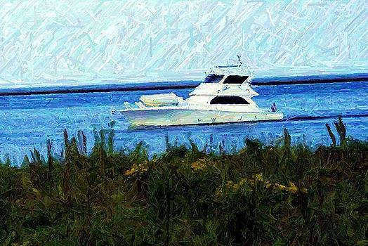 Taking A Cruise by Jeffery Bennett