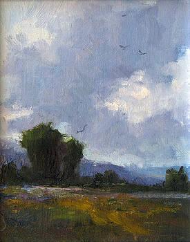 Taking Flight by Steven  McDonald