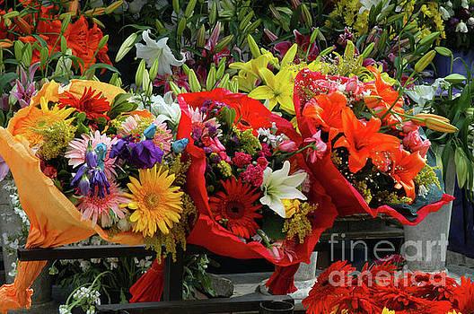 Bob Phillips - Taksim Square Flower Market One