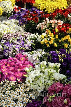 Bob Phillips - Taksim Square Flower Market Three